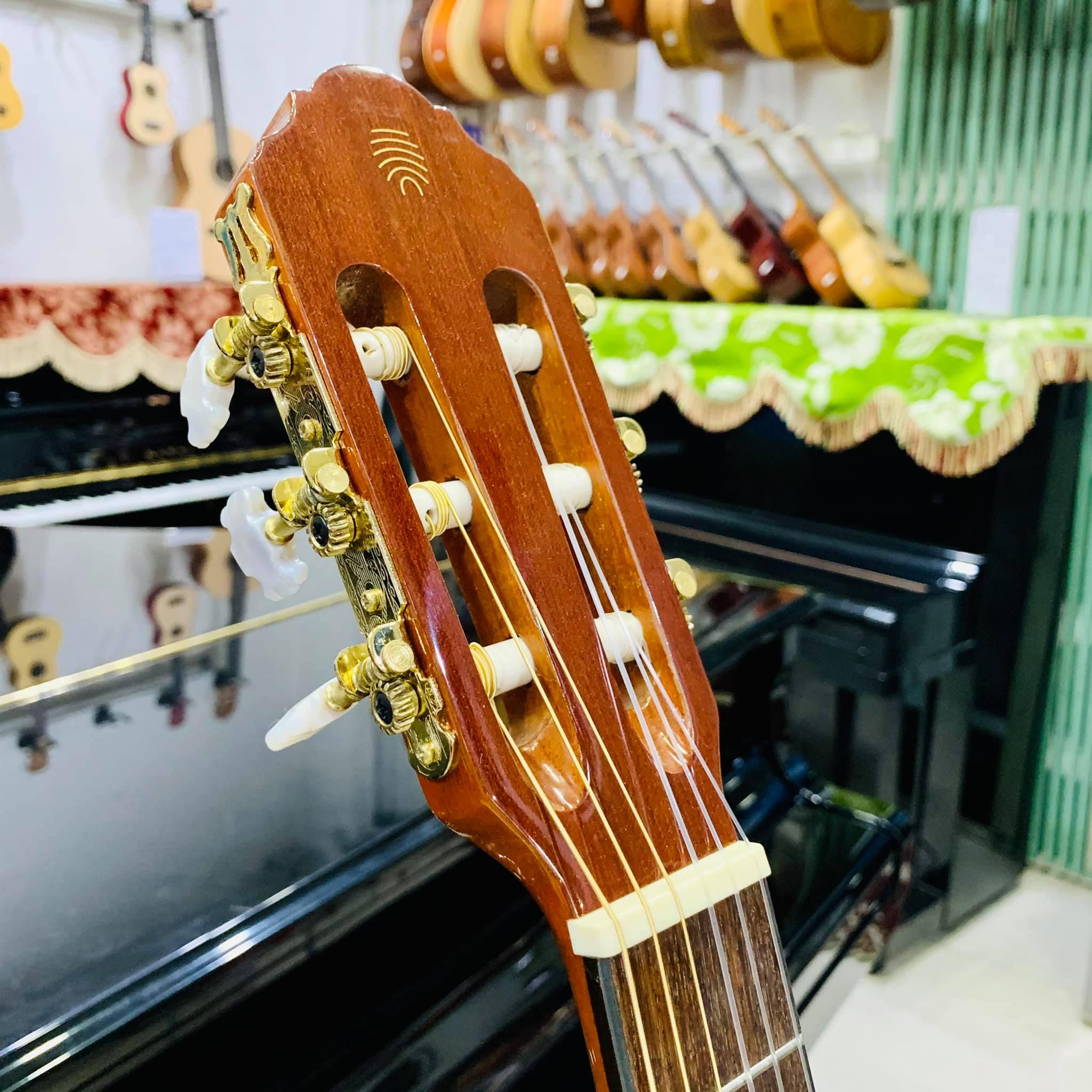 Đàn guitar eko vibra classic